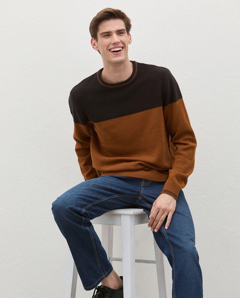 Maglione girocollo bicolor in puro cotone uomo cover